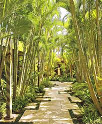 florida backyard ideas florida backyard ideas backyard bamboo landscape tropical with