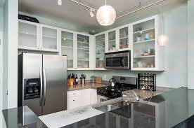Contemporary Kitchen With Ushaped  European Cabinets In Grand - Kitchen cabinets grand rapids mi