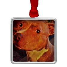 pit bull ornaments keepsake ornaments zazzle