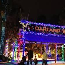 zoo lights houston 2017 dates zoo lights 43 photos 10 reviews festivals 10520 stella st