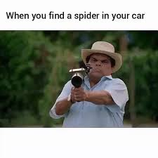 You Get A Car Meme - the proper way to remove spiders from your car gif on imgur