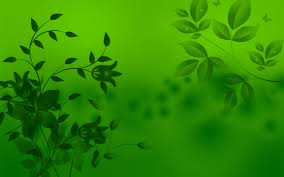 green leaves abstract 6964957
