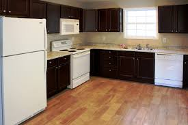 Discount Kitchen Cabinets Atlanta Surplus Warehouse Cabinets Best Home Furniture Decoration