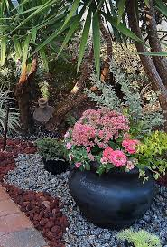 spring garden containers red lava rocks relate to the pavers and