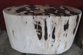 natural stone table fossil wood table youtube