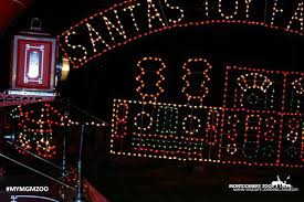 montgomery zoo hosting christmas lights festival