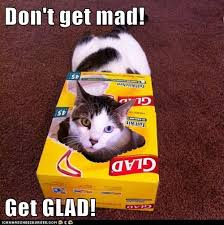 Mad Kitty Meme - don t get mad get glad lolcats lol cat memes funny cats