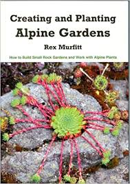 creating and planting alpine gardens how to build small rock