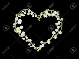 Lily Of The Valley Flower Heart Shape Made Of Lilly Of The Valley Flowers Stock Photo