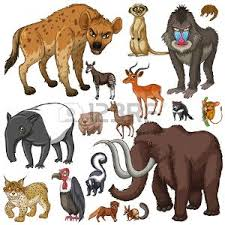imagenes de animales carnivoros para imprimir animales carnivoros imágenes de archivo vectores animales