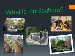 objectives learn the importance of horticultural products ppt