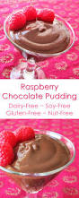 dairy free chocolate pudding with raspberry infusion go dairy free