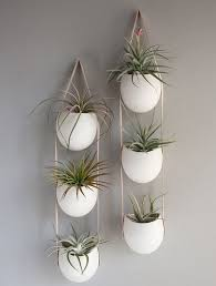 plant wall hangers indoor hanging planters and container garden ideas for indoors