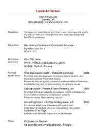 Most Successful Resume Template Most Successful Resume Template Resume Ideas