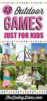 Backyard Picnic Games - 65 outdoor party games for the entire family plinko game