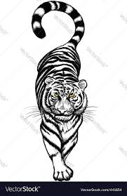 black and white crouching tiger royalty free vector image