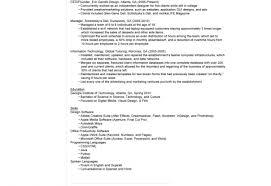 dazzle view sample resume tags professional resume preparation