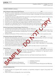 General Manager Resume Sample Curriculum Vitae General Manager Accounts Receivable