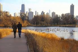 things to do in chicago on everyblock everyblock chicago