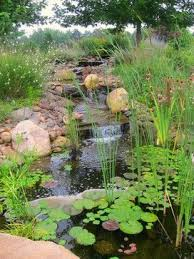 Retention Pond In Backyard 8 Best Detention Pond Images On Pinterest Ponds Water