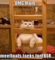 Mom The Meatloaf Meme - omg mom meetloafs taeks foreber i can has cheezburger