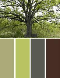 oak tree color pallet dark trim light siding green door