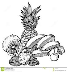 outline sketch monochrome pineapple stock vector image 84842486