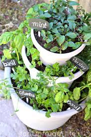 Diy Backyard Patio Ideas 54 Diy Backyard Design Ideas Decor Tips Noticeable Garden