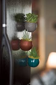 new moon set of three magnetized mini succulent gardens