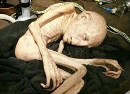 Funny Aliens Meme - cb45f3290d7e54c7a83a0d865d3e1b7c aliens meme funny stuff jpg 640 627