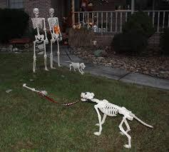 pin by lane banne u0027 on halloween skeletons pinterest skeleton