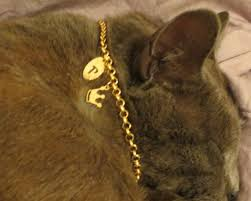 Personalized Cat Necklace The 25 Best Personalized Cat Collars Ideas On Pinterest Custom