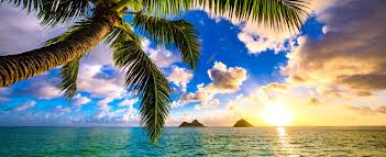 oahu real estate oahu homes and condos for sale oahu real estate for sale