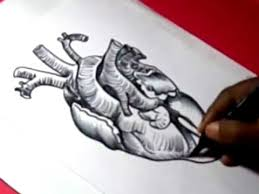 how to human heart drawing for kids step by step youtube