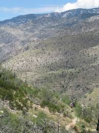 Mt Lemmon Hiking Trails Map Sycamore Reservoir Trail Hike Lemmon
