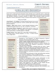Objectives In Resume Example by Security Professional Resume