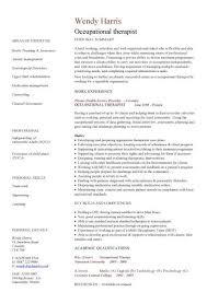 Key Competencies Resume Medical Cv Template Doctor Nurse Cv Medical Jobs Curriculum