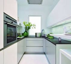 small narrow apartment kitchen design with indoor plant decoration