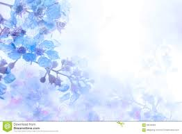 Blue And Purple Flowers Abstract Soft Sweet Blue Purple Flower Background From Plumeria