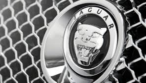 jaguar logo jaguar crossover to get aluminum body ian callum design report