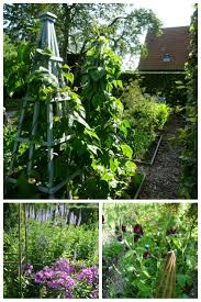 50 best kitchen gardens images on pinterest gardening veggie