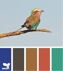 35 best true value paint colors images on pinterest paint colors