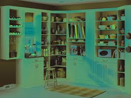 Kitchen Pantry Organization Systems - kitchen pantry organization containers kitchen pantry cupboard