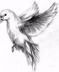the 25 best dove drawing ideas on pinterest joker face tattoo
