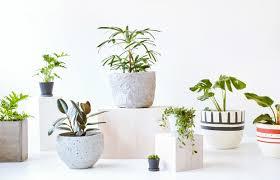 concrete planters garden pots and planters melbourne home outdoor decoration