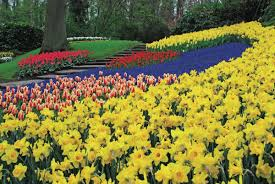 flower garden in amsterdam coach holidays to amsterdam holland shearings holidays