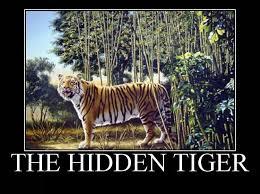 Funny Tiger Memes - you see it hidden tiger