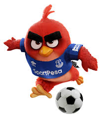 angry birds enters flight english football everton