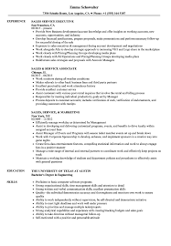resume templates account executive position salary in nfl what is a franchise sales service resume sles velvet jobs