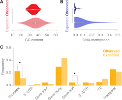 the genomic landscape of meiotic crossovers and gene conversions